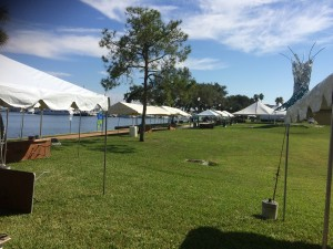 st. pete science festival