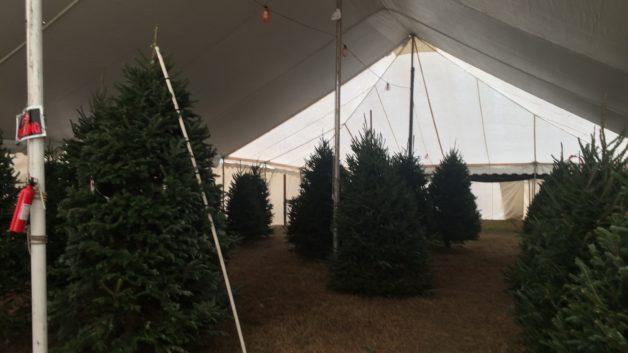 sales tent